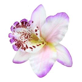 Haarclip enkele orchidee wit/lila