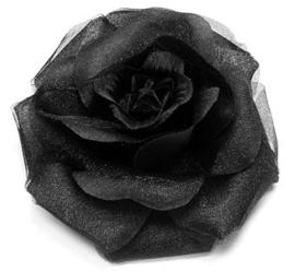 Grote roos op klem zwart