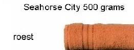 SEAHORSE CITY 60x110 *OP=OP*