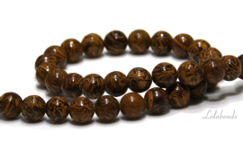 10 strengen Jaspis kralen rond ca. 6mm (62)