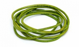 APPLE GREEN: Griffin koord leer 2,0mm / 1 meter