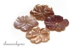 25 stuks Pink Shell Parelmoer rond ca. 16mm