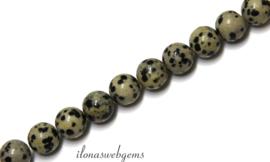 10 strengen Dalmatier Jaspis kralen rond ca. 4mm (52)