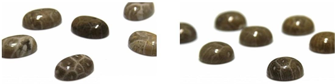 Fossil kralen