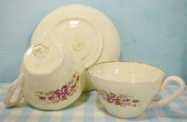 Societé Ceramique Maestricht kop & schotel set roosjes