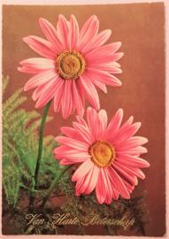 Vintage ansichtkaart Van Harte Beterschap - roze bloemen