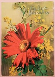 Vintage ansichtkaart Van Harte Beterschap - rode bloem
