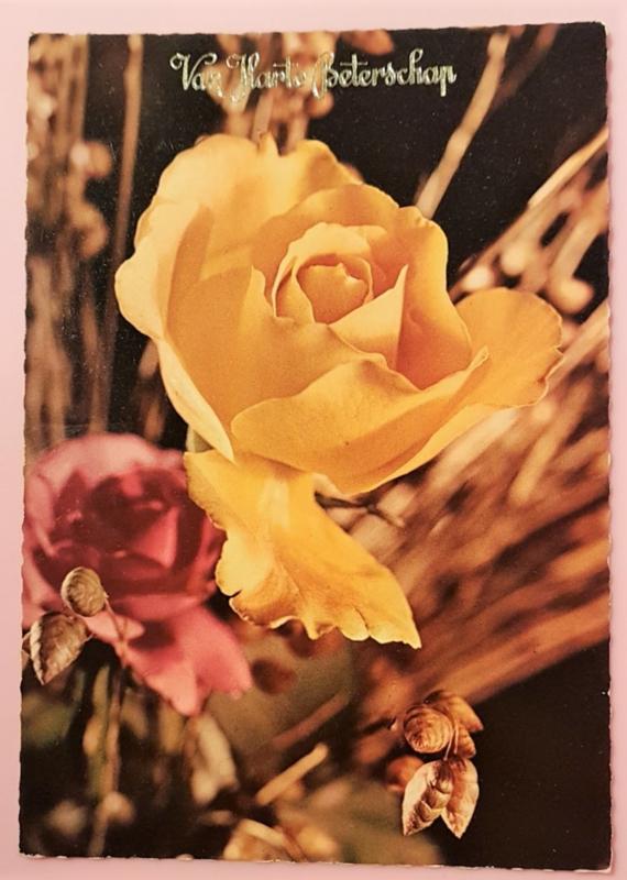 Vintage ansichtkaart Van Harte Beterschap - gele roos 2