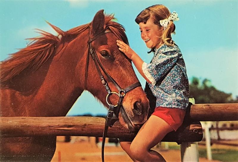 Vintage ansichtkaart meisje met paard