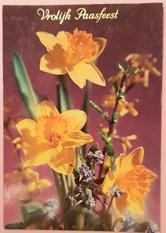 Vintage ansichtkaart Vrolijk Paasfeest - Narcissen