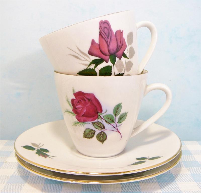 Bavaria kop & schotel roosjes