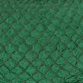 Fish Leather  glanzend Emerald +- 23 x 6,5 cm (FSGH-EG)
