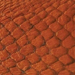 Fish Leather  glanzend citrus - 23 x 6,5 cm (FSGH-CT)