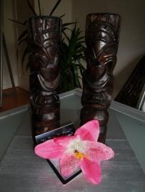 Lila Jo, Pink Sparkle Lily.