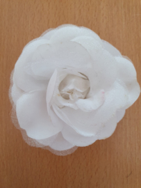 White Small Rose.