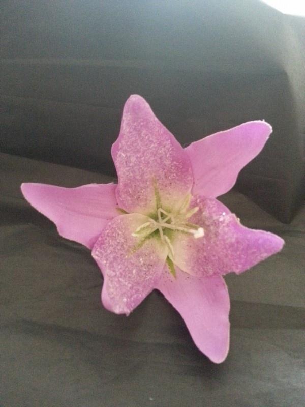 Lila Jo, Lilac Sparkle Lily.