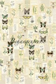 Poster Botanical INK6076