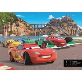 Dutch Wallcoverings Fotobehang Disney Cars Race