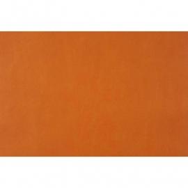 065. Caselio Uni oranje