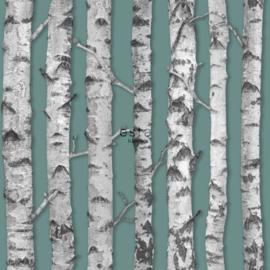Esta Greenhouse  Berken boomstammen oud vergrijsd groen en licht warm grijs 138891