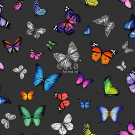 Esta vlinders zwart groen roze geel paars