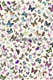 Poster Butterflies INK6073