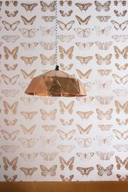 Onszelf Vlinderbehang koper wit OZ 3264