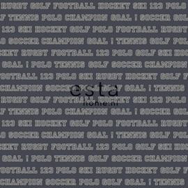 College Sport teksten behang grijsblauw 115624