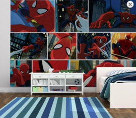 Spiderman Wall Mural 70-585