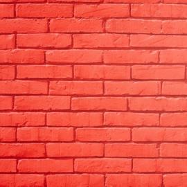Life Stenen muur behang Rood