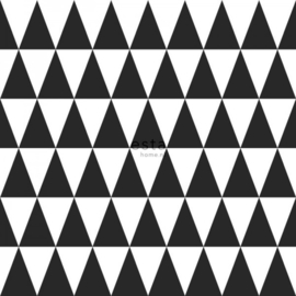 Esta Greenhouse grafisch geometrische driehoek zwart en mat wit 128845