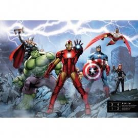Dutch Wallcoverings Fotobehang Marvel Avengers FTD2230