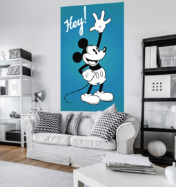 Mickey Mouse Classic VD-053