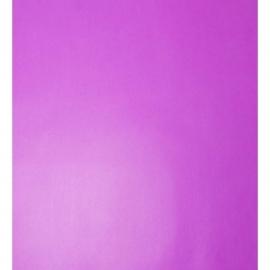 073. Caselio Uni paars
