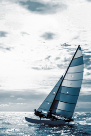 Esta Home Regatta Crew surf edition PhotowallXL Sailingboat 158846