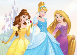 Princess Wall Mural 70-588