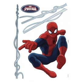 Spiderman Sticker 14041h