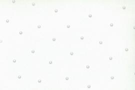 Onszelf Mint met zilveren stipjes OZ 7517