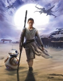 Star Wars Rey - 4-448