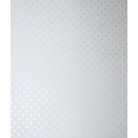 029. Caselio Stipjesbehang in zilver metalic