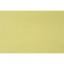 075. Caselio Uni licht limegroen