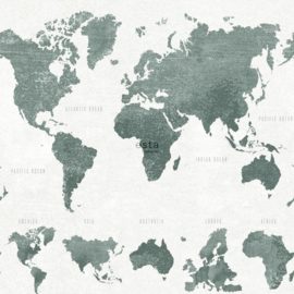 Wereldkaart behang grijs groen 138971
