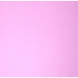074. Caselio Uni lila