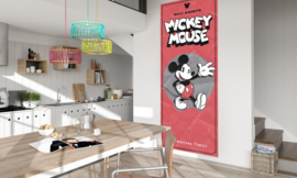 Mickey Mouse Classic 052-DVD1