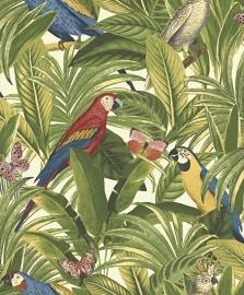 Papegaai met vlinder in jungle kleur 2203