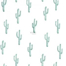 Esta Greenhouse Kleine woestijn cactus vergrijsd turquoise 138898
