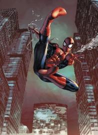 Spiderman Jump  4-459