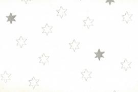Onszelf Sterretjes wit zilver OZ 3062