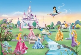 013. Princess Castle Poster 8-414