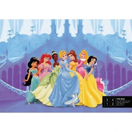 Dutch Wallcoverings Fotobehang Disney Princess In The Castle FTD 0264